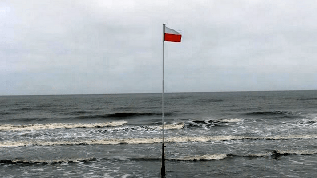 Organizacje-polskie-w-Danii