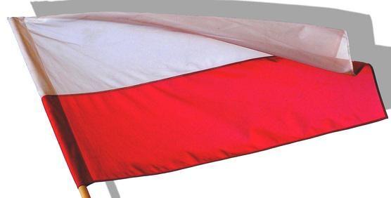 Rada-Polskiego-Instytutu-Spraw-Miedzynarodowych-nowi-czlonkowie